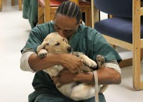 Puppy love makes the world go round